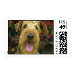 Airedale Stamps
