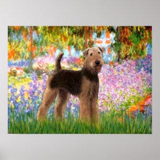 Airedale Terrier - (#6Garden) Póster