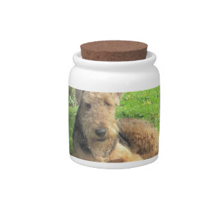 Airedale Terrier  Candy Jar