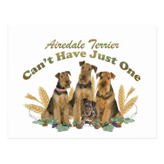 Airedale Terrier Can't Have Just One Postcard
