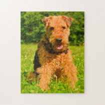 Airedale Terrier Dog. Jigsaw Puzzle