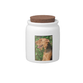 Airedale Terrier Dog Treat Candy Jar