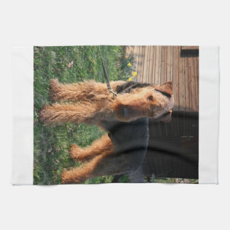 Airedale_Terrier full.png Towel
