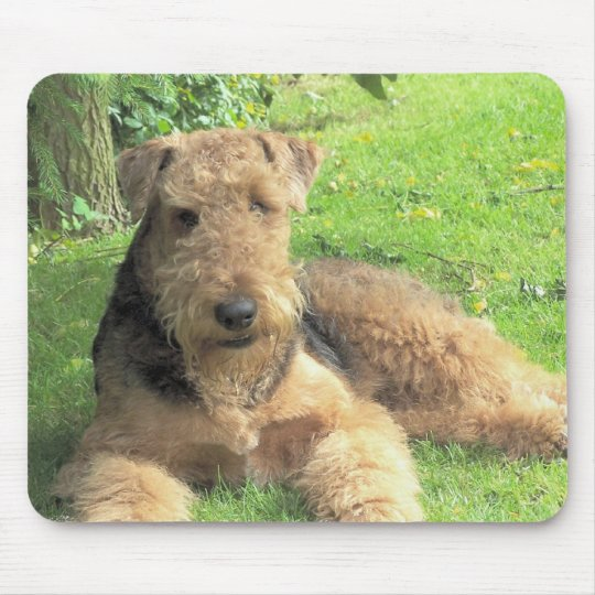 Airedale Terrier Mouse Pad
