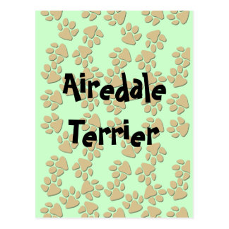 Airedale Terrier - Postcard
