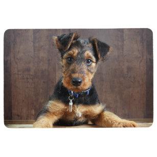 Cute Puppy Indoor Floor Mats Rugs