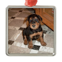 Airedale Terrier Puppy Metal Ornament