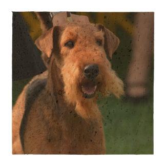 Airedale Terrier Posavasos