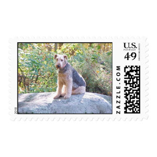 AIREDALE TERRIER SELLOS