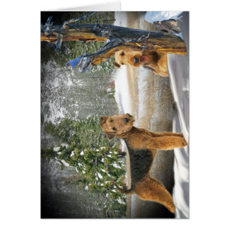 Airedale Terrier Winter Day gifts Card