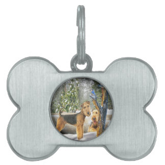 Airedale Terrier Winter Day gifts Pet Tag