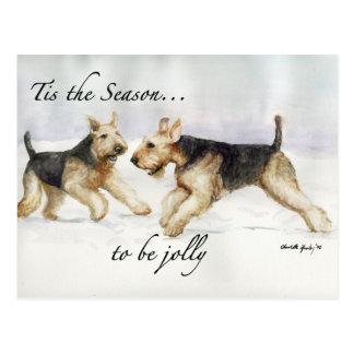 Airedale Tis the Seson art postcard