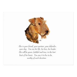 Airedale, Welsh, Lakeland Terrier Keepsake Post Cards