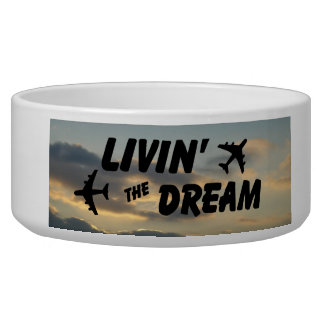 Airplane Dream Dish