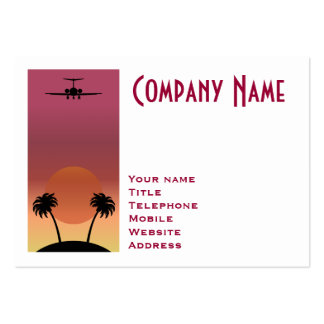Airplane Large Business Card