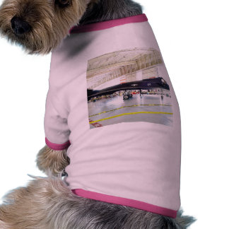 Airplane Stealth Fighter Pet T Shirt