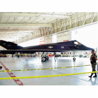 Airplane Stealth Fighter Cut Out