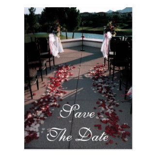 Aisle with Rose Petals Save The Date Postcard