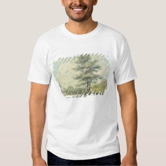 Ajardine con los árboles y las figuras, c.1796 camisas