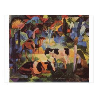 Ajardine con vacas y un camello en agosto Macke Tarjetas Postales