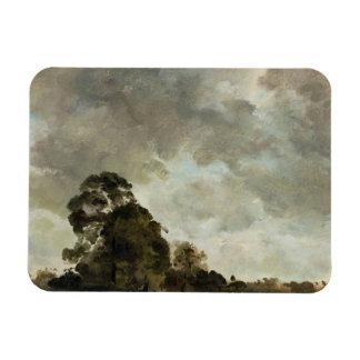 Ajardine en las nubes de Hampstead, del árbol y de Imán