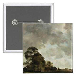 Ajardine en las nubes de Hampstead, del árbol y de Pins