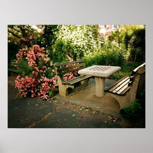 Ajedrez y rosas, medio poster