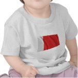 Ajman Waving Flag Shirts