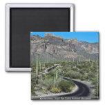 Ajo Mountains, Organ Pipe Cactus National Monument Fridge Magnet