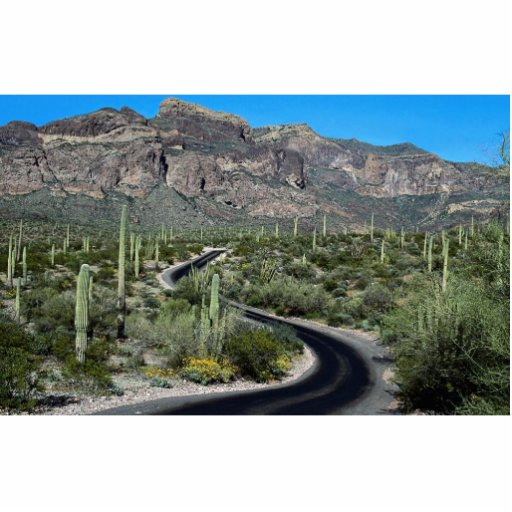 Ajo Mountains, Organ Pipe Cactus National Monument Photo Cut Outs