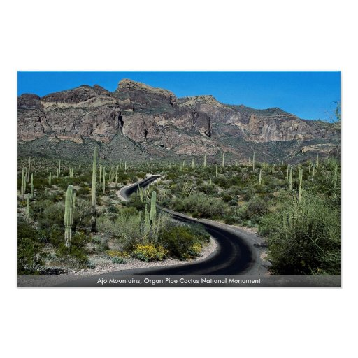 Ajo Mountains, Organ Pipe Cactus National Monument Poster