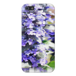 Ajuga Flowers Cases For iPhone 5