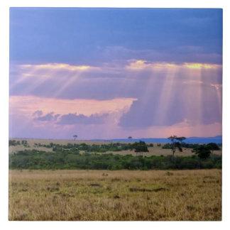 Ajuste de Sun en el Masai Mara Azulejo Cuadrado Grande