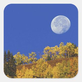 Ajuste en la salida del sol, nacional de la luna pegatina cuadrada