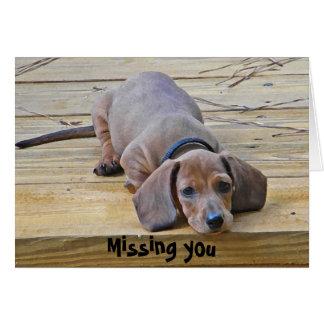 AK- Funny Dachshund Missing You Card