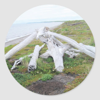 ak tundra round sticker