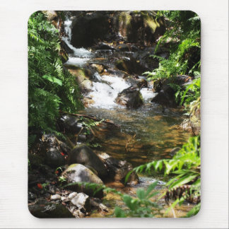 Akaka Fall smaller trail stream 1 Mouse Pad