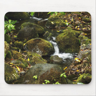 Akaka Fall smaller trail stream 2 Mouse Pad