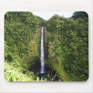 Akaka Falls 1 Mouse Pad