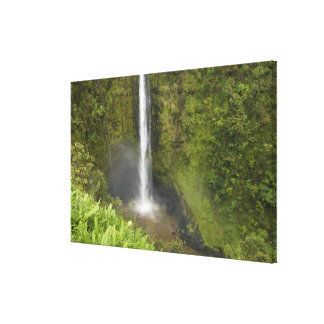 Akaka Falls, Hamakua Coast, Island of Hawaii, Canvas Print