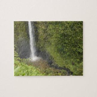 Akaka Falls, Hamakua Coast, Island of Hawaii, Jigsaw Puzzle