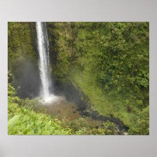 Akaka Falls, Hamakua Coast, Island of Hawaii, Poster
