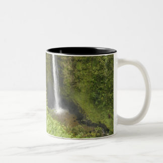 Akaka Falls, Hamakua Coast, Island of Hawaii, Two-Tone Coffee Mug