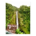 Akaka Falls, HI Postcard