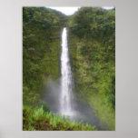 Akaka Falls Hilo, Hawaii Posters