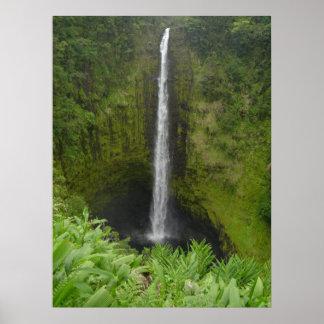 Akaka Falls Poster