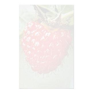 Akala, hawaiiensis del Rubus Papeleria De Diseño