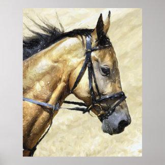 Akhal-Teke Horse Portrait Poster Print