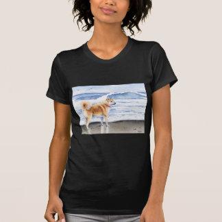 Akita At The Beach Tshirts