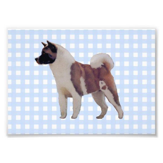 Akita Blue Gingham Photo Print